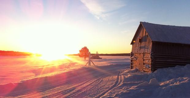Natur_vinterhus