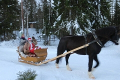 Julmarknad_hästsläde